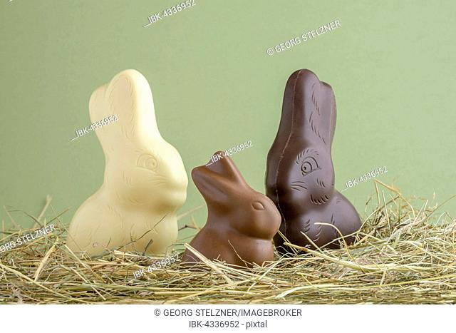 Chocolate easter bunnies, chocolate rabbits in a straw nest
