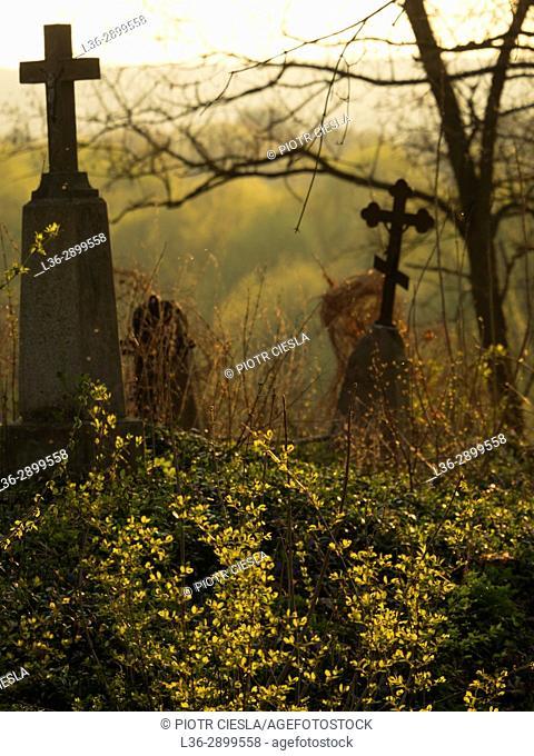 Eastern Poland. Mielnik. Old cemetery