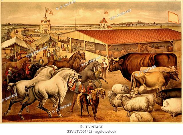 Sights at the Fair Grounds, Currier & Ives, Lithograph, 1888
