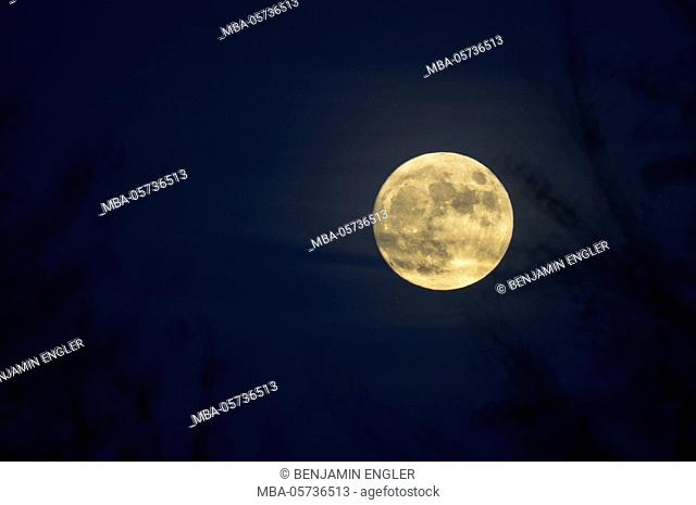 Full moon in the background with blurred foreground
