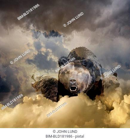 Bear growling in cloudy sky