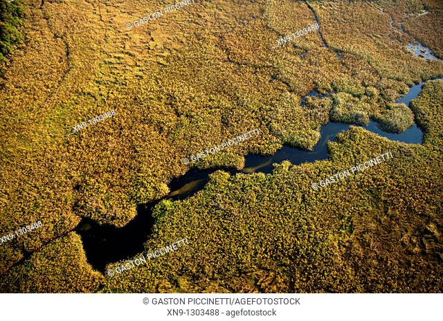 Aerial View of the Okavango Delta, Botswana