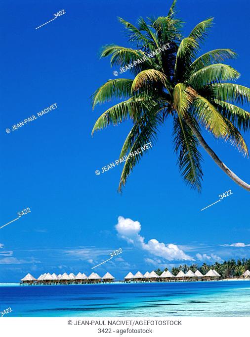 Tourist acomodation. Bora-Bora Island. (French Polynesia)