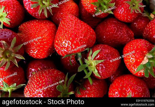 Erdbeeren in Pappschale