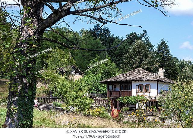 House two ostriches, Bozhentsi, Gabrovo, Bulgaria