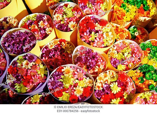 Rambla de las flores Barcelona