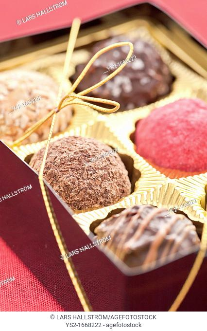 Closeup of chocolate truffles in a box of chocolates