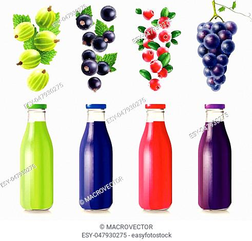 Realistic bottles with berry juice set from gooseberry black currant cranberry and grape isolated vector illustration