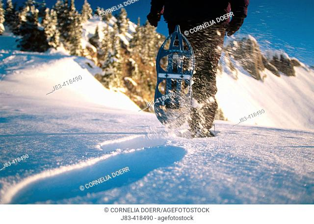 Snow shoes hiking. Alps. Germany