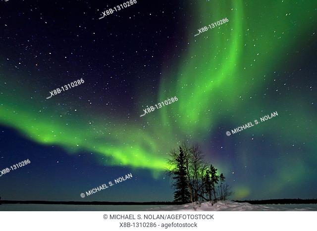 Aurora Borealis Northern Polar Lights over the boreal forest outside Yellowknife, Northwest Territories, Canada, MORE INFO The term aurora borealis was coined...