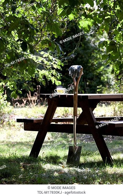 A garden spade resting against a wooden table with herbal tea