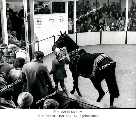 Oct. 10, 1967 - Hill House is Sold for the Record Price of 12.700 Guineas at Doncaster. Hill House whose sensational victory in the Scheppes 'Gold Trophy' in...