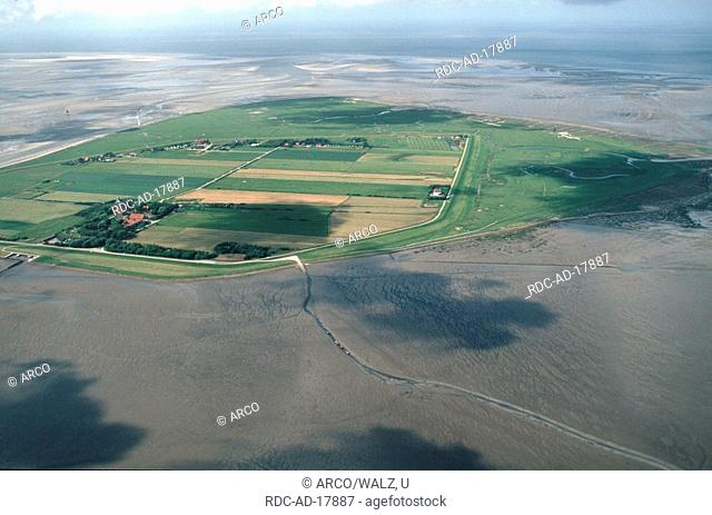 Island Neuwerk, East Friesland, North Sea, Lower Saxony, Germany