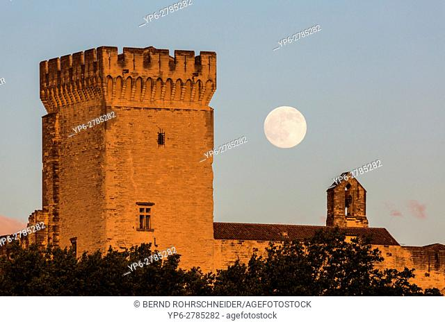 Papal palace (Palais des Papes) at sunset with full moon, Avignon, France