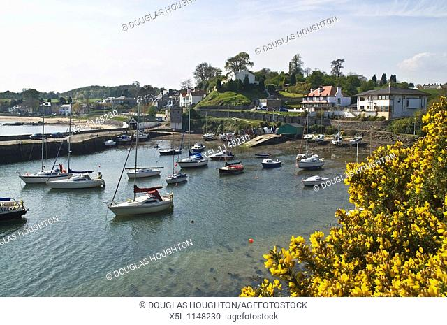 ABERDOUR FIFE Yacht boats in Aberdour yachting harbour yellow gorse