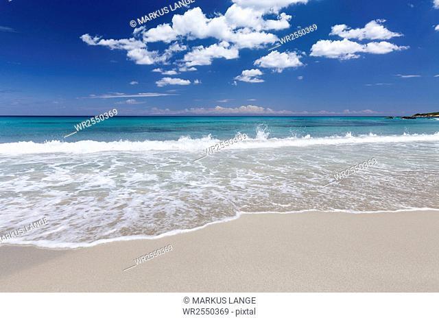 Baia dei Turchi beach, near Otranto, Lecce province, Salentine Peninsula, Puglia, Italy, Europe