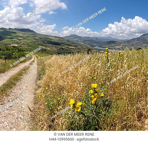 Path to lake Rosamarina