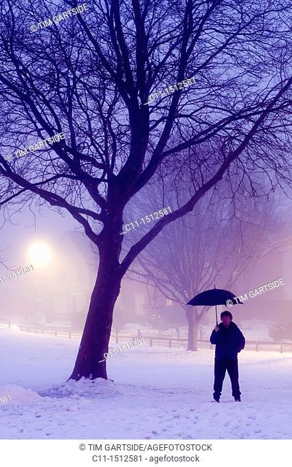 man with umbrella,winter fog with trees at night, Biggin Hill, Kent, England, UK, Europe