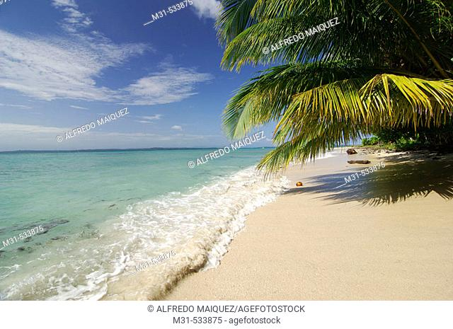 Beach at Zapatilla Cay.  Bastimentos Nacional Marine Park. Mangroves. Bocas del Toro archipelago. Caribbean sea. Panama