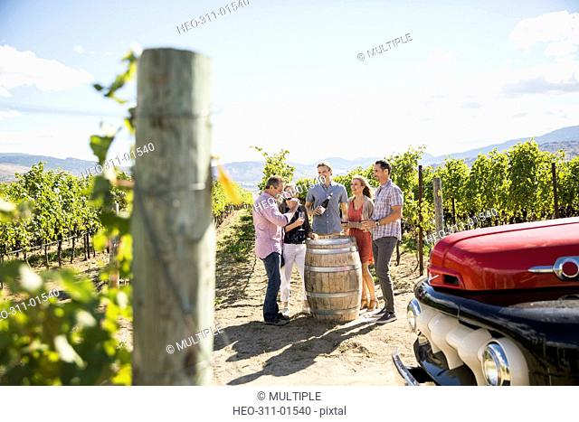 Vintner and couples wine tasting in sunny vineyard