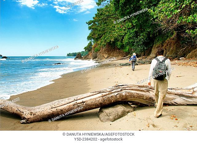 wild coast of the Pacific Ocean, Corcovado National Park, Costa Rica,