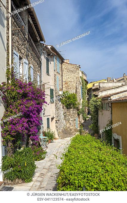 Alley in the old town with Bougainvillea as tendril flowers on the building facade, Grimaud-Village, Var, Provence-Alpes-Cote d`Azur, France, Europe