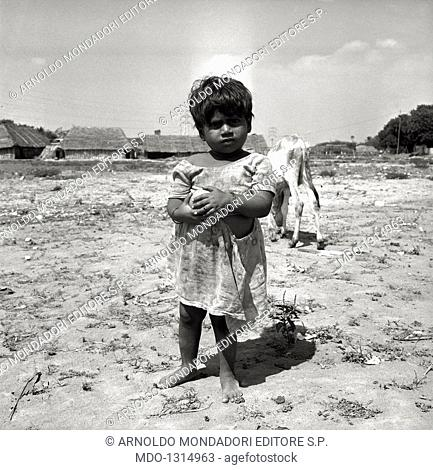 A baby girl with a fruit in her hands in the outskirts of Madras. A baby girl with a fruit in her hands, in front of a calf, at the Salesian mission of Fr