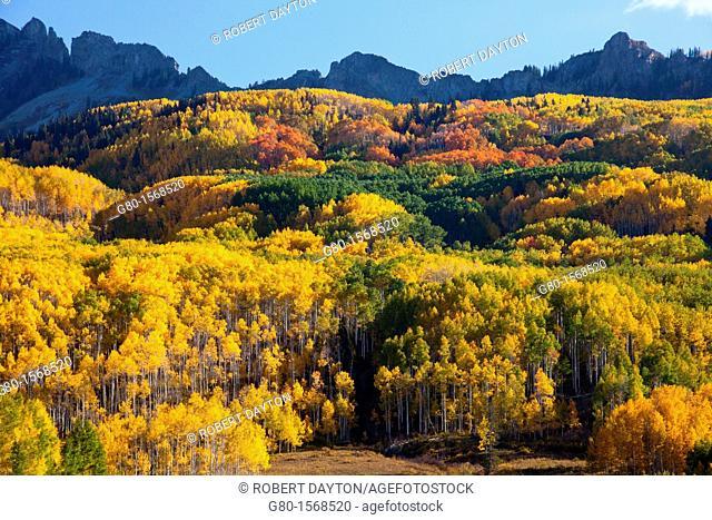 Fall, Kebler Pass, Colorado