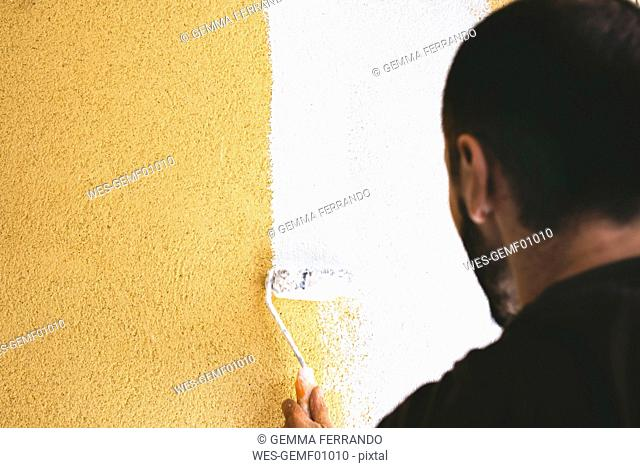 Back view of man painting wall with paint roller