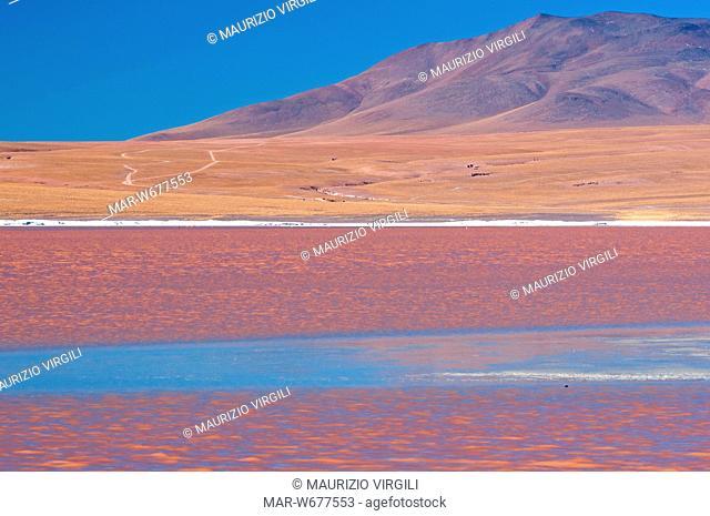 laguna colorada, riserva eduardo avaroa, los lipez, altopiano, bolivia, america del sud