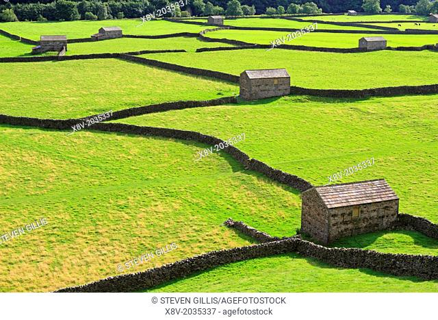 Field barns in Gunnerside, Swaledale, Yorkshire Dales, England, UK
