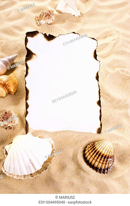 Burned paper with shells