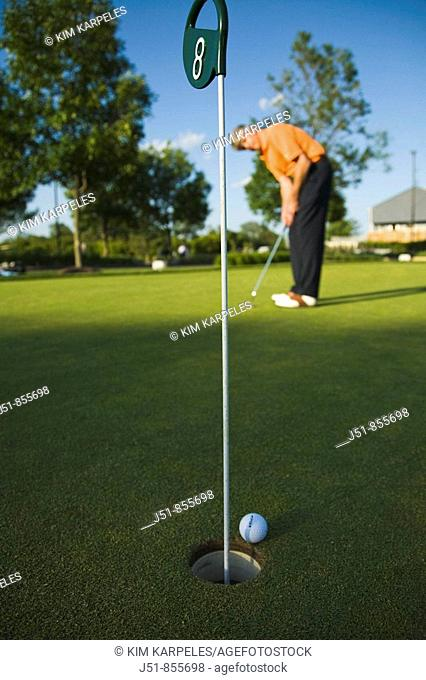 GOLF Adult middle aged male practice putting on green at public course in Deerfield, Illinois