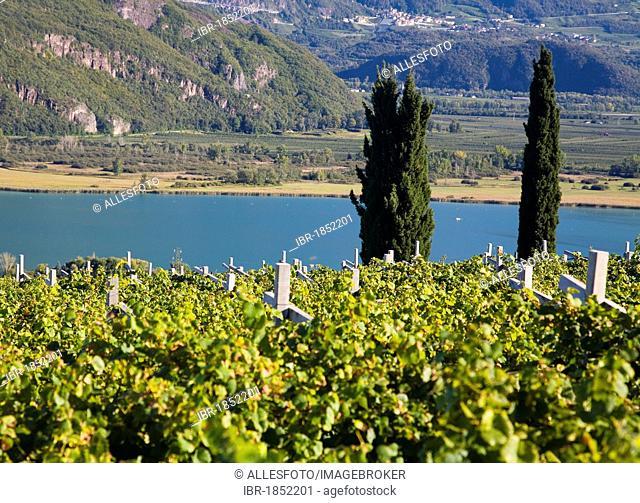 Landscape on Lake Kaltern, province of Bolzano-Bozen, Italy, Europe