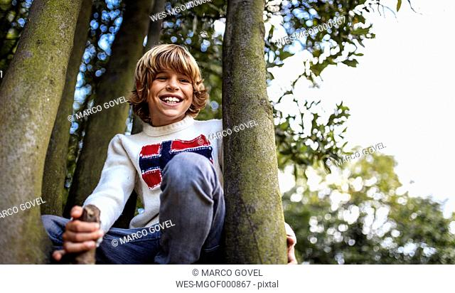 Blond boy wearing pullover with Norwegian Flag sitting between two trees