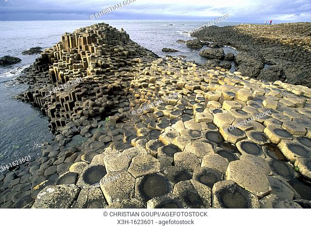 The Giant's Causeway, County Antrim, Northern Ireland, United Kingdom, Western Europe