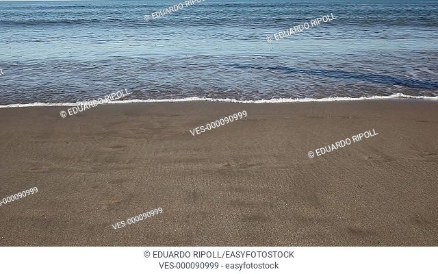 closeup of bare feet walking on the beach
