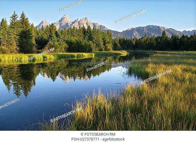 backwater, meadow, reflected, mountains, teton, grassy