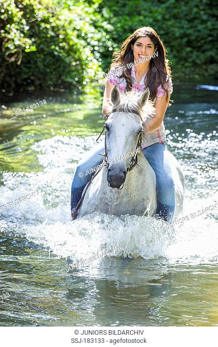Thoroughbred. Young woman on a gray mare crossing a river. New Zealand