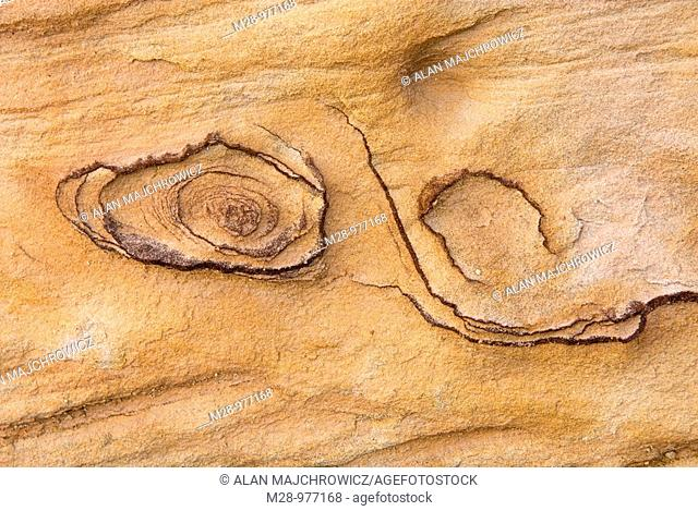 Abstract patterns in Kayenta Sandstone, Capitol Reef National Park Utah
