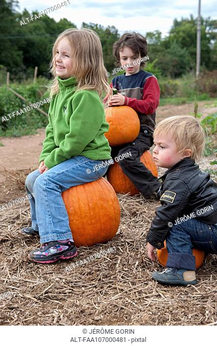 Children sitting on top of pumpkins