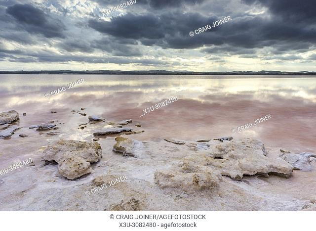 The shore of the pink Salt Lake of Torrevieja, Province of Alicante, Spain