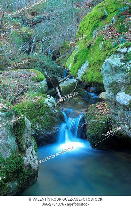Stream on the path of the hermitage Virgen Lomos de Orios to the waterfalls of Puente Ra. Natural park Sierra Cebollera. La Rioja