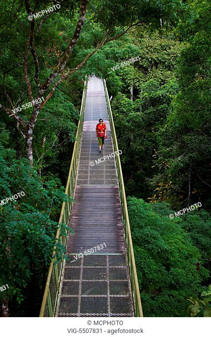 The 90 foot high CAN0PY WALKWAY at the RAINFOREST DISCOVERY CENTER located in the KABILI SEPILOK FOREST in SABAH near the city of SANDAKAN - MALAYSIA, BORNEO -