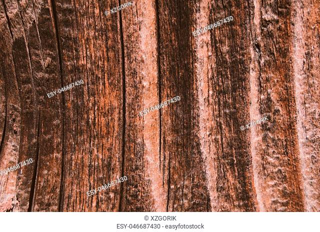 wood texture brown color background
