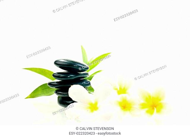 Black zen stone with white flowers