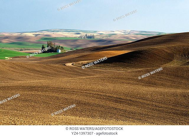 Palouse rolling hills in Washington State USA