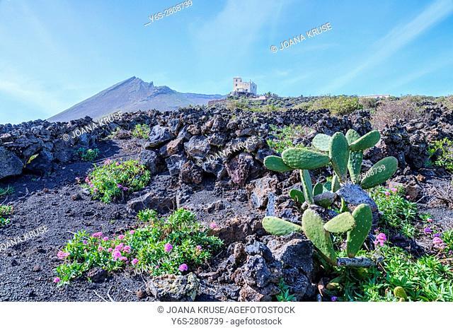Monto Corona, Haria, Lanzarote, Canary Islands, Spain