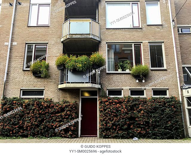 Tilburg, Netherlands. Front view facade of a social housing apartment building down town, with green vegetaion