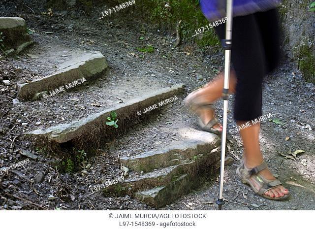 Hiker walking down stone steps along the Camino de Santiago